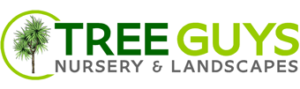 Tree Guys Nursery